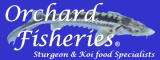 Orchard Fisheries Sturgeon Food